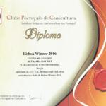 LISBOA-WINNER