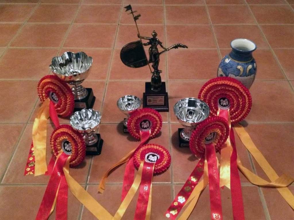 trofeos-sevilla